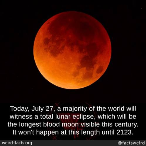 Blood Moon picture