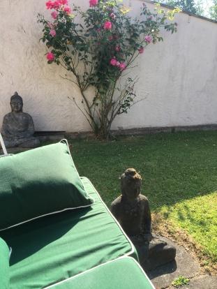 garden 0012